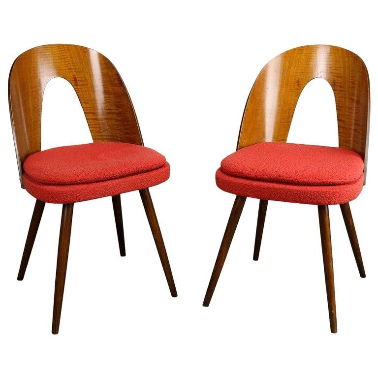 Pair of Mid Century Dining Chairs by Antonín Šuman for Tatra Nabytok NP, 1960s