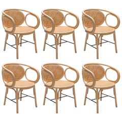 Set of Six Rattan Dining Armchairs French Modern Design