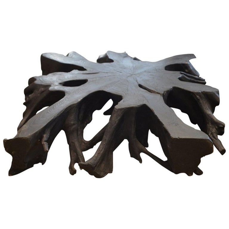 Andrianna Shamaris Teak Wood Root Wall Hanging or Coffee Table For Sale
