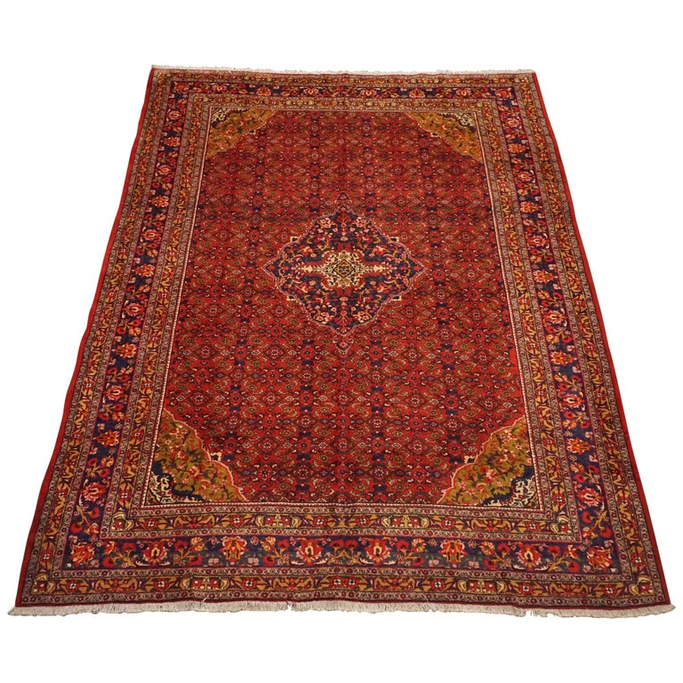 Antique Cotton Agra Rug With Abrash Circa 1900 For Sale: Fine Persian Bidjar Rug With Bird Motif, Circa 1960 For