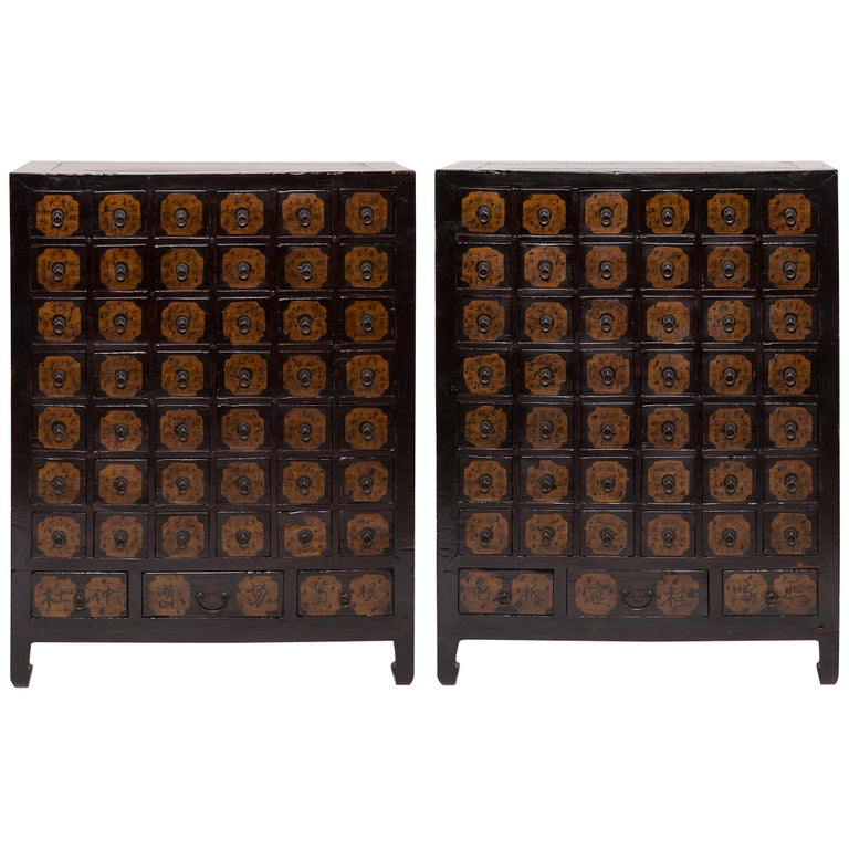Pair of 19th Century Chinese Apothecary Chests