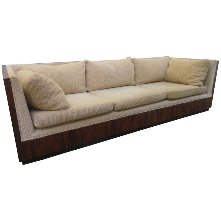 Fabulous Milo Baughman Rosewood Case Sofa Mid-Century Modern
