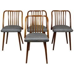 Dining Chairs by Antonin Suman, 1960s, Set of Four