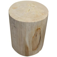 Andrianna Shamaris White Petrified Wood Side Table