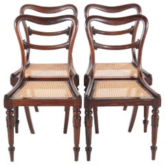 19th Century English Rosewood Dining Chairs