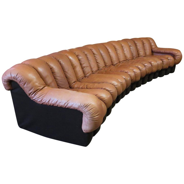 De Sede DS-600 Non Stop Leather Sofa, 16 Sections For Sale