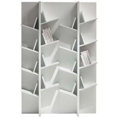 Pacini & Cappellini Tree Bookcase in Glass & Veneered Wood by Cristina Palear