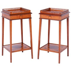Pair of Edwardian Mahogany Stands