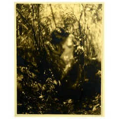 """Nude in the Wood,"" by Charles J. Cook, Vintage Sepia Toned Photo, circa 1925"