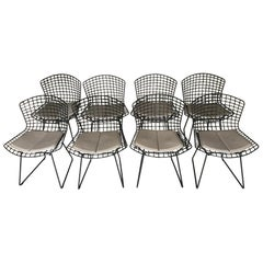 Set of Eight Vintage Chairs by Harry Bertoia for Knoll