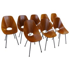 Set of Eight Medea Chairs by Vittorio Nobili for Fratelli Tagliabue, Italy, 1955