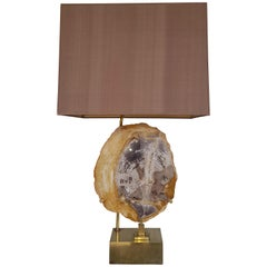 Willy Daro Petrified Wooden Lamp Mounted on a Brass Base