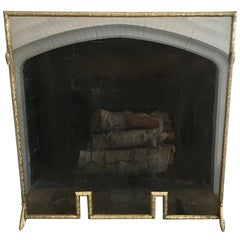 Brass Fireplace Screen with Leaf Detais