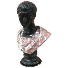 Late 1800s Glazed Terracotta and Marble Bust of a Youthful Augustus, Italy