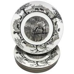 Set of Eight Wedgwood African Safari Plates
