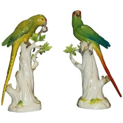 Meissen Porcelain Figures of Parrots Standing on Tree Branches with Leaves, Pair