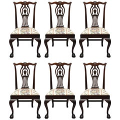 Six Bench Made Carved Mahogany Chippendale Style Ball and Claw Dining Chair Set