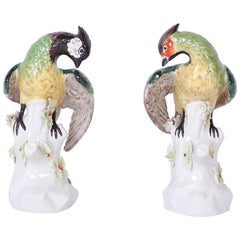 Pair of Italian Porcelain Parrots
