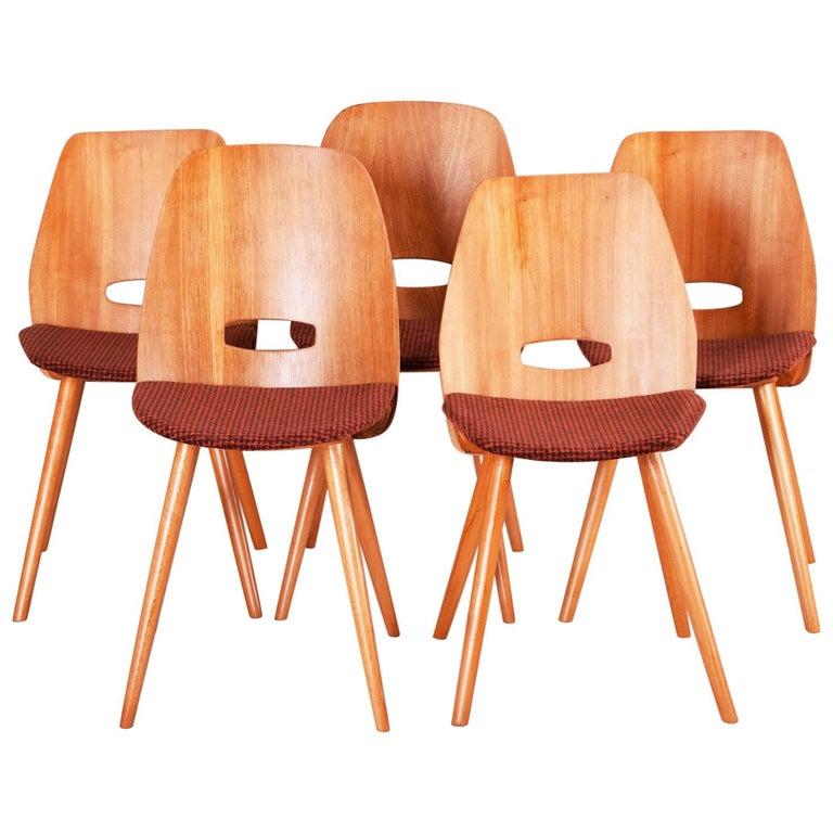 Czech Midcentury Chairs, Five Pieces, Tatra Nábytok, Architect František Jirák