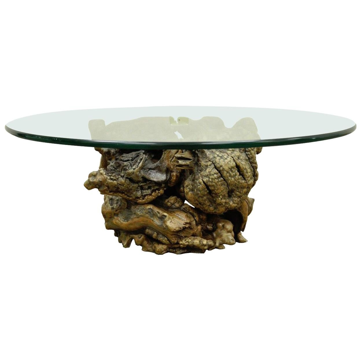 Vintage Mid Century Modern Live Edge Drift Wood Glass Top Burl Wood Coffee  Table For