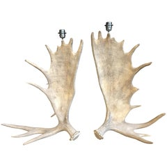 Nice Pair of Table Lamps Made of Canadian Moose Antlers