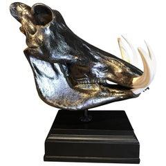 Metalized Skull of a Warthog