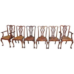 Set of 18 Mahogany Chippendale Style Dining Chairs, 19th Century