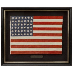 "42-Star ""Whimsical Star Pattern"" American Flag - Unofficial Flag, Circa 1889"