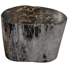 Andrianna Shamaris Petrified Wood Side Table