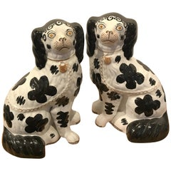 Pair of Black & White Staffordshire Disraeli Spaniels # H2490