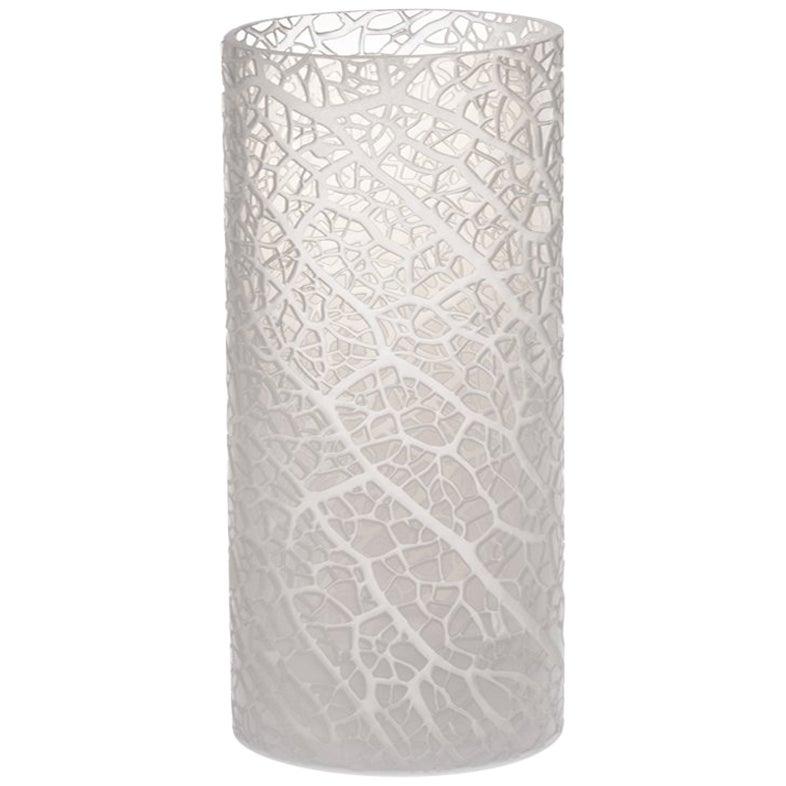 "Contemporary Glass Vase, Ficus ""B"" Large"