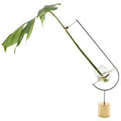 V3 Vase Monstera by Paulo Goldstein, Brazilian Contemporary Design, Brass/Steel