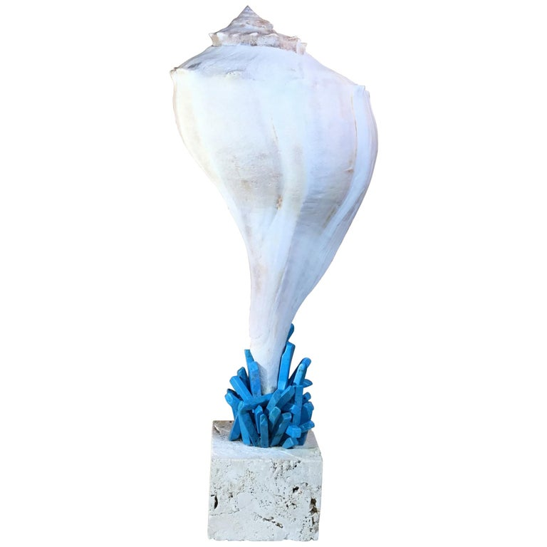 One of a Kind Seashell and Turquoise Stone