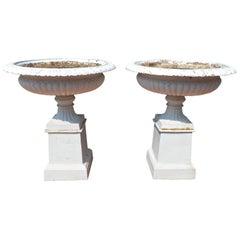 Cast Iron Pair of Garden Urns