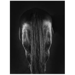 Horse Series, Small Color Photograph