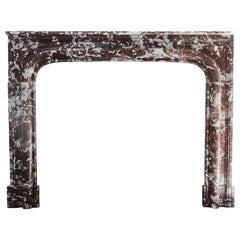 Antique Marble Stone Fireplace from the 19th Century, Louis XIV Style