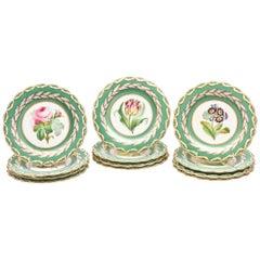 12 Antique Botanical Plates, English Porcelain 19th Century Handpainted Florals