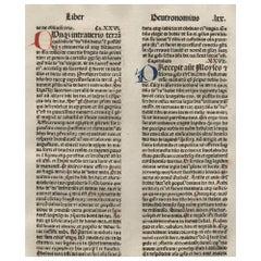 """The Promise"" Deuteronomy 26-28, 1479 Large Latin Bible Leaf Medieval Incunabula"