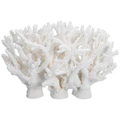 Custom Coral Sculpture or Centerpiece