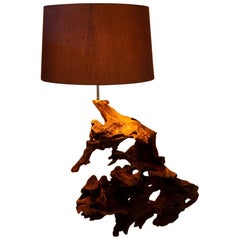 Large Bog Oak Side Lamp