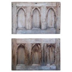19th Century Gothic Revival Panels a Pair