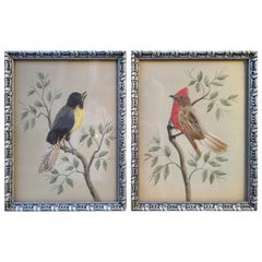 Pair of Early 20th Century Paintings Taxidermy Birds German