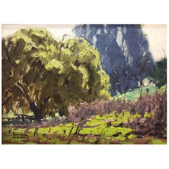 Sam Hyde Harris, 'Spring Splendor' 1920, American