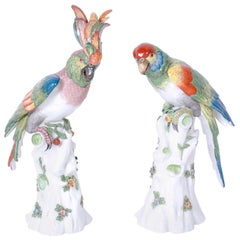 Pair of Porcelain Parrots