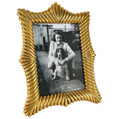 Doré Gilt Bronze French Picture Frame