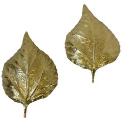 Pair of Large Brass Rhubarb Leafs Wall Scones by Tommaso Barbi