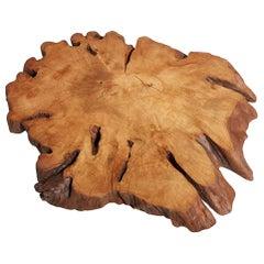 Hornbeam Tree Live Edge Coffee Table, Live Edge Table, Rustic Edge End Table