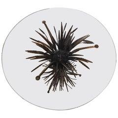 """Coco Chanel """"Fasce Di Grano"""" Small Table Glass Golden Natural Iron, 1955"""