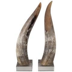 Custom Mounted Large Texas Longhorn Cattle Horns on Acrylic