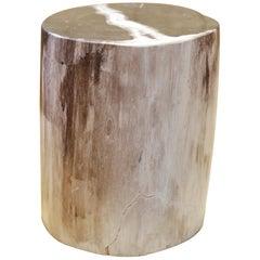 Small Petrified Wood B Column